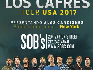 Entrevista a Guillermo Bonetto, vocalista de Los Cafres