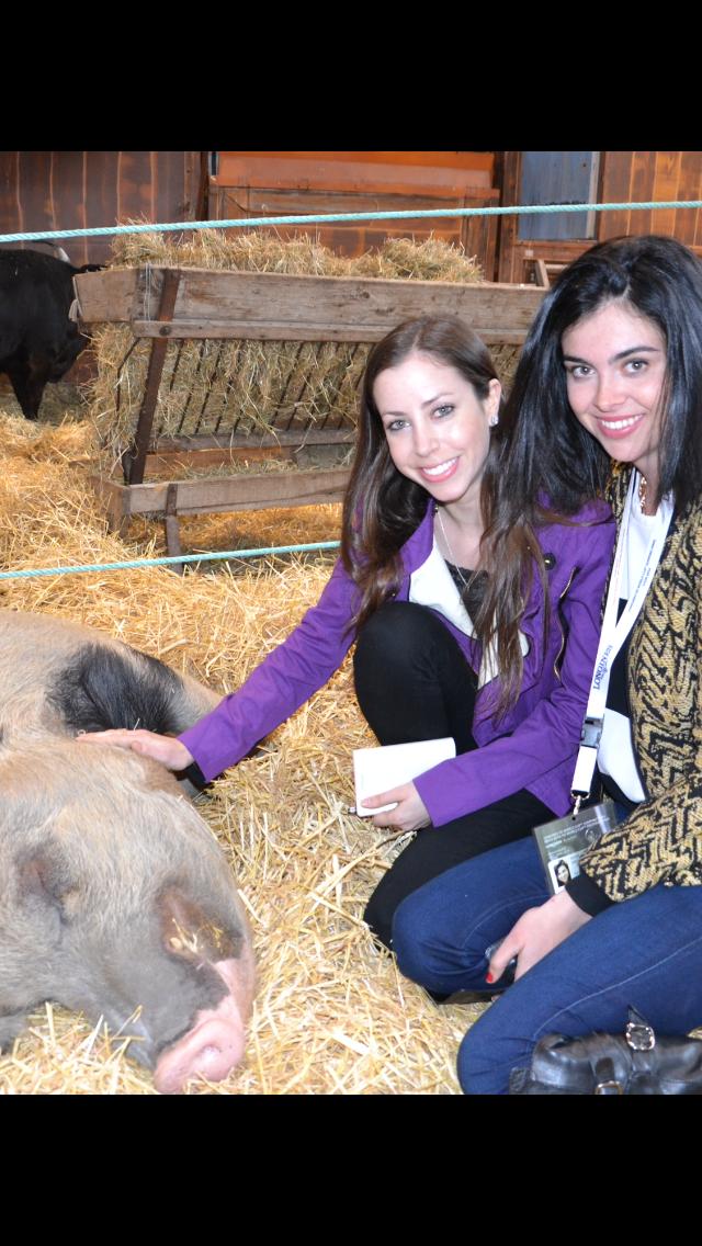 Taylor & Jessie's new porcine friend