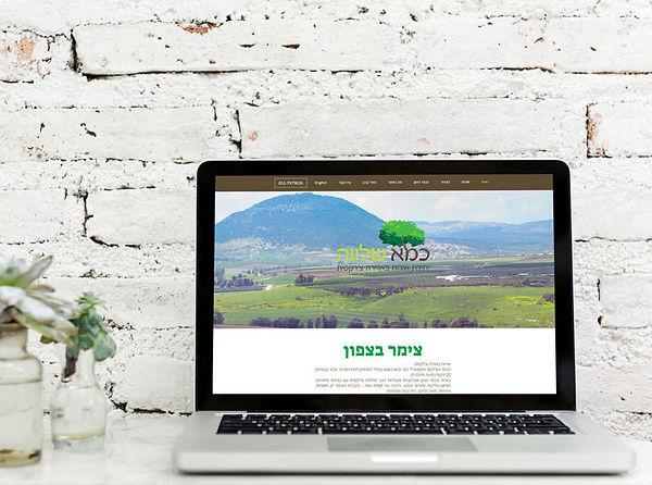 בניית אתר בוויקס