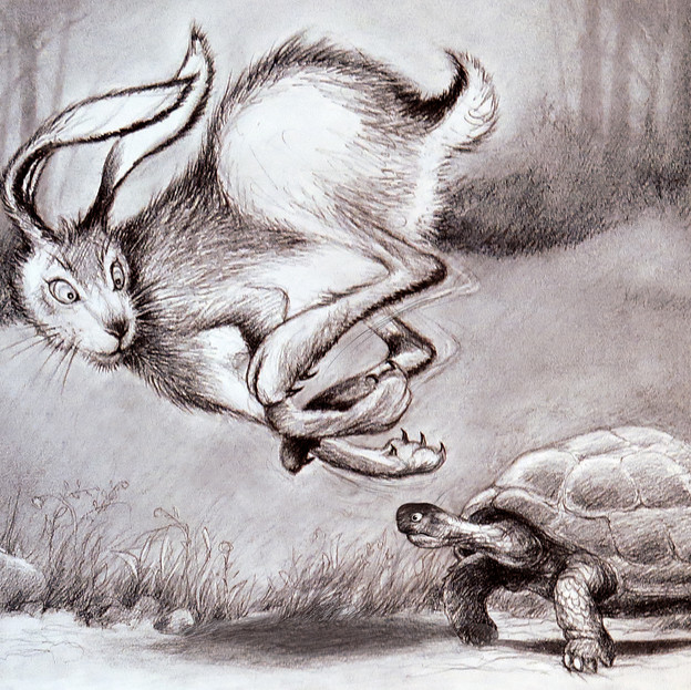 Aesops Rabbit and Turtle