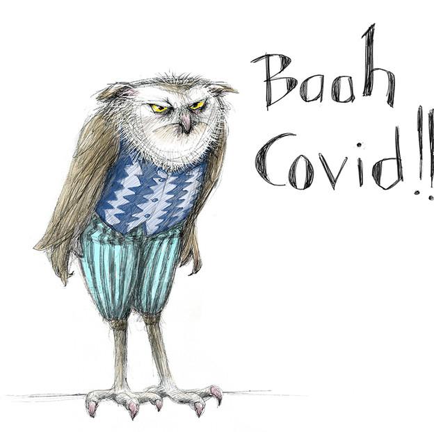 Covid Owl