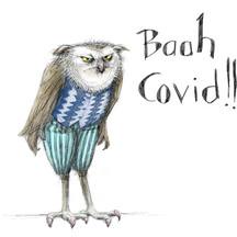 Covid owl illustration, Caterpillar Magazine Summer 2021