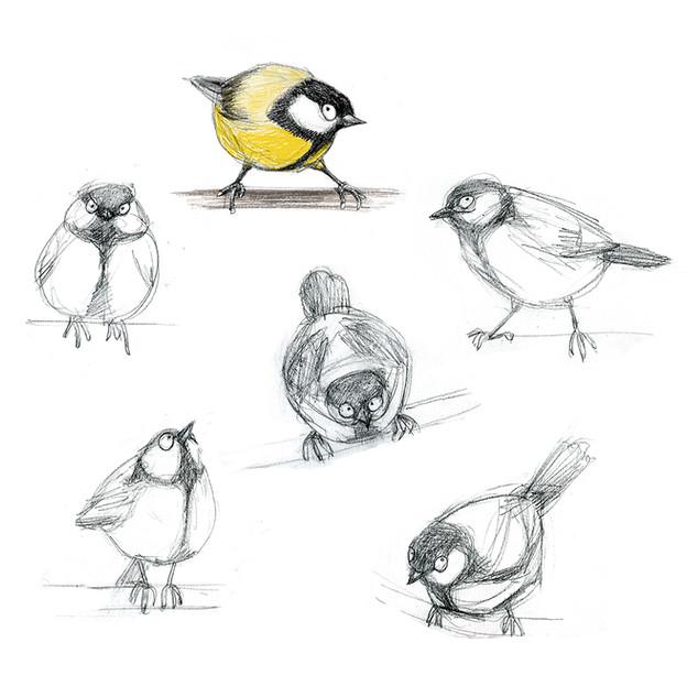 Yellow bird character sketches