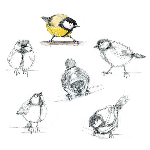 Great Tit character sketches