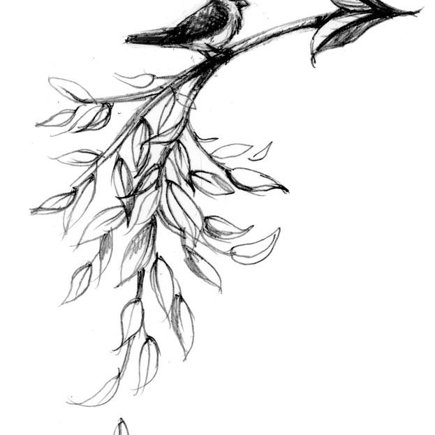 Arrow sketch