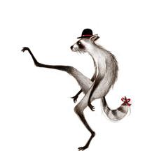 Silly walk raccoon, Applied Arts Illustration Award 2019