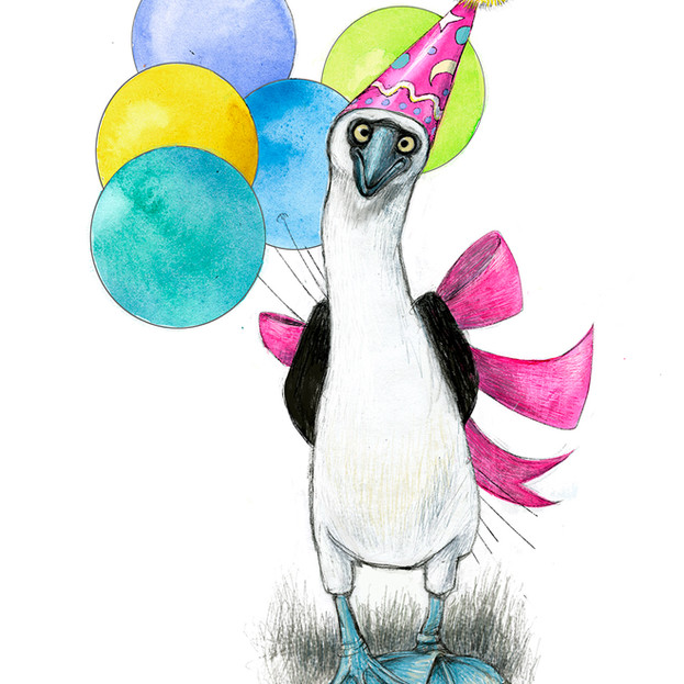 Booby birthday wishes