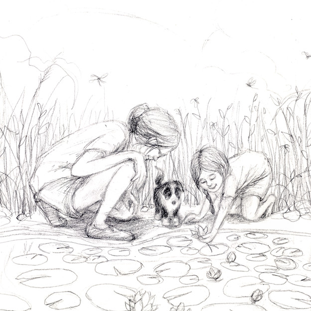 Whistle of the frogs sketch
