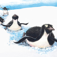 Spread for 'Birds Dig, Dance and Dive': upcoming publication by Owlkids Books, Spring 2022