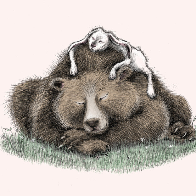 Bear and Hare take a nap