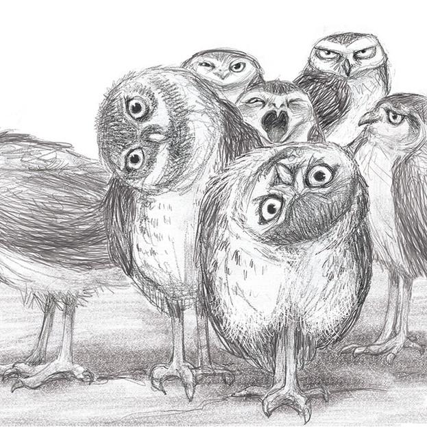 Gang of owls sketch