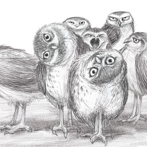 owl gang.jpg