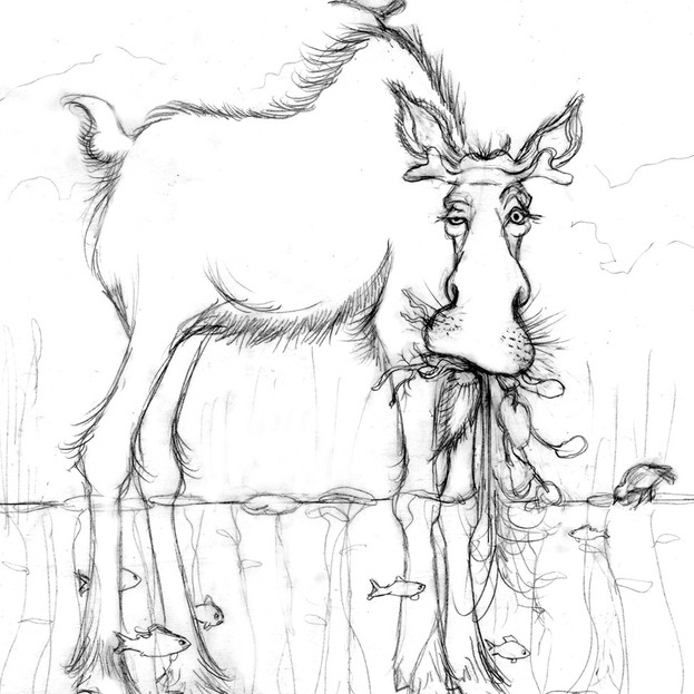 Moose on the Loose poem drawing