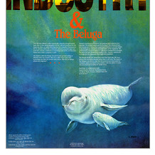 Beluga and Industry poster: Greenpeace