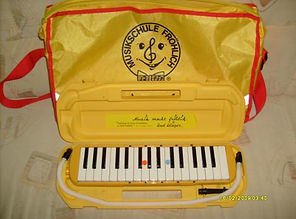 melodika-der-musikschule-froehlich-in-ge
