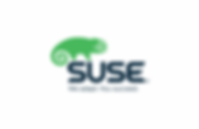Suse2-copy.png