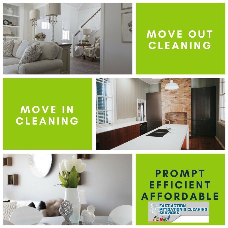 Move-In/Move-Out     Cleaning