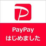 paypay_start2.jpg