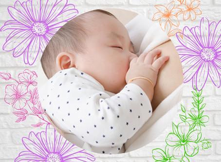 母乳外来 〜赤ちゃんの吸い付き〜