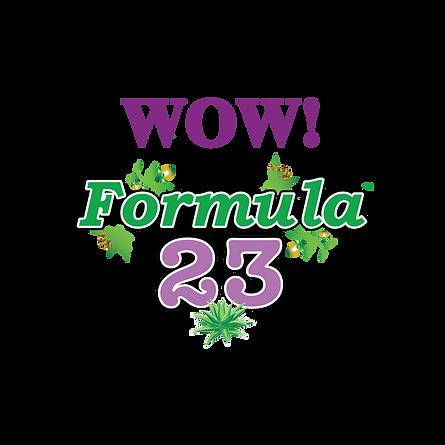 F23 Logo [Big]-01.png