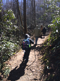 Joyce Kilmer Forest Trail