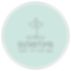 לוגו מיינפולנס רקע שקוף.png