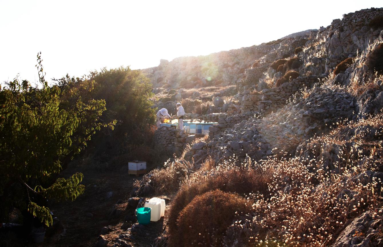CH_Folegandros_GR_Beekeeper_018.png