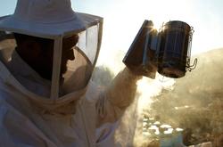 CH_Folegandros_GR_Beekeeper_015