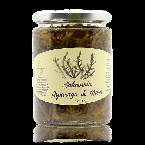 Salicornia in olio EVO
