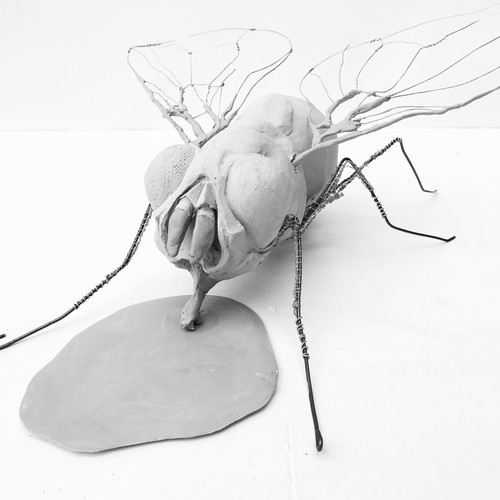 Rodent-Size-Fly at the clay stage