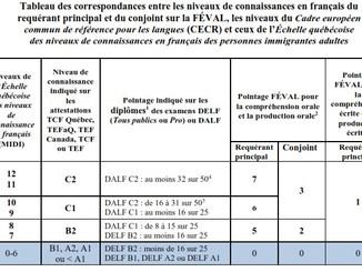 Facteur 4, Les Connaissances linguistiques