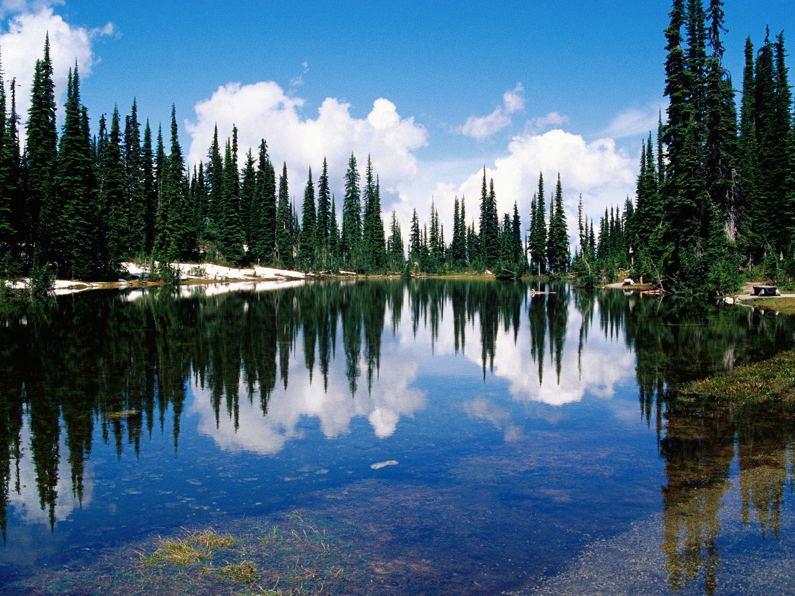 Balsam Lake, Mount Revelstoke National Park, British Columbia, Canada