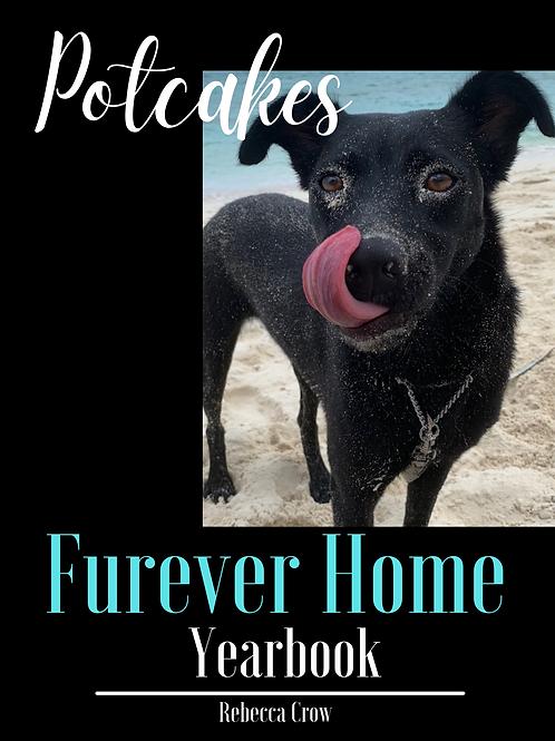 Furever Home Potcake YEARBOOK (Volume 2)