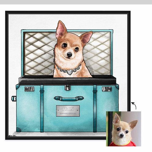 Potcake/Pet Traveler (Turquoise)