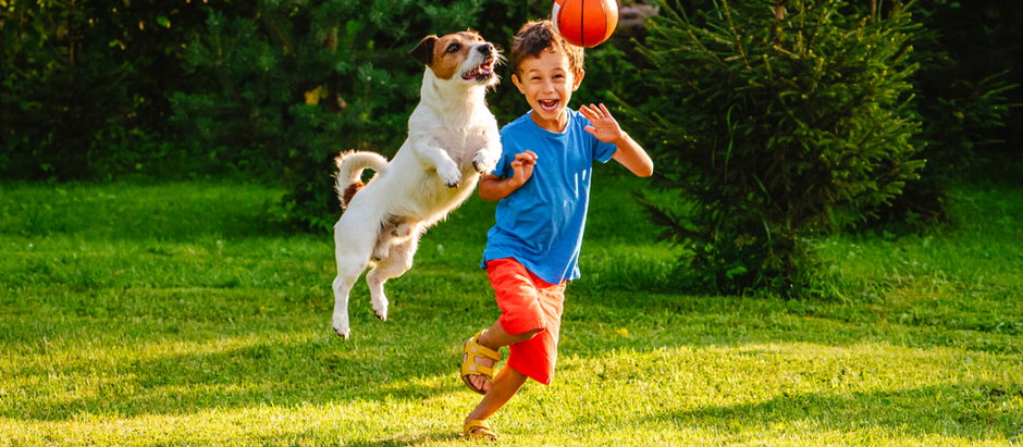How to Make Your Yard Safer for Kids and Pets
