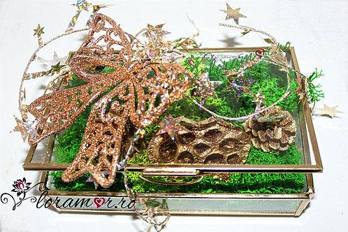 Caseta licheni naturali decorativi