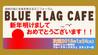 湘南で上映!湘南の海と未来を考えるミニフォーラム BLUE FLAG CAFE 1/24 (土)10:30~ 監督もスカイプで参加します!