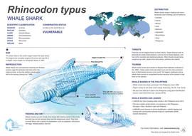 Marine infographics