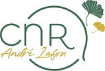 LogoCNR.jpg