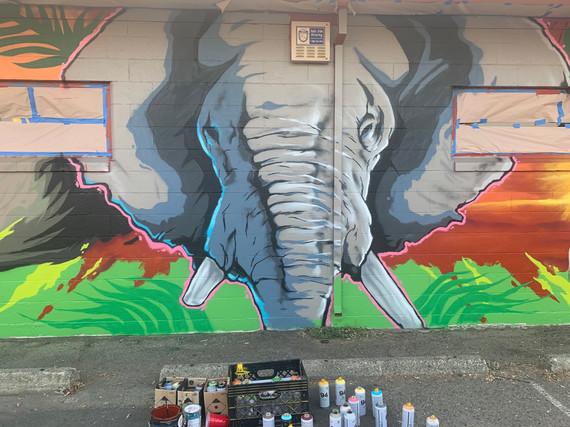 Elephant Shack