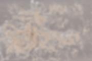 Screen Shot 2020-04-14 at 1.09.40 PM.png