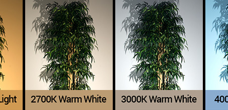How do you select landscape lighting color temperature?