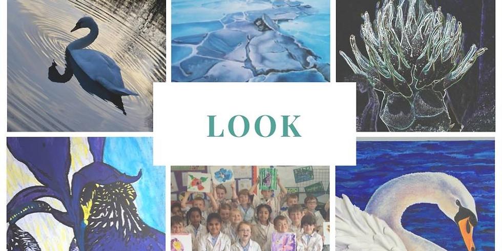 Look - The Art of Seeing