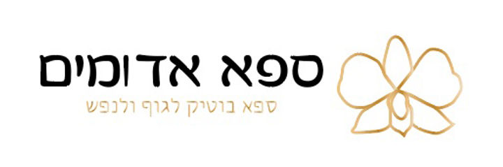 לוגו ורטיקלי.jpg