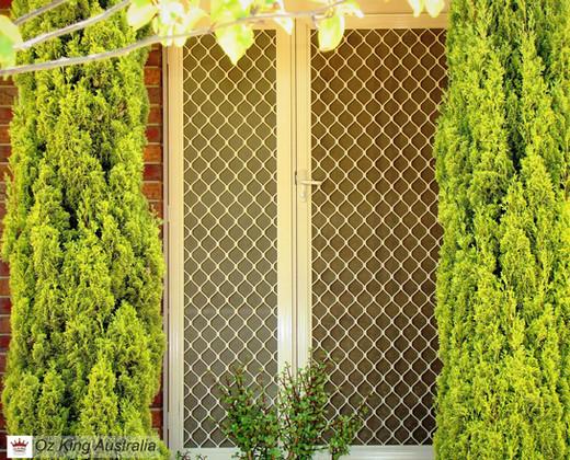 4. Security Door