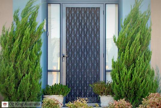 5. Security Door