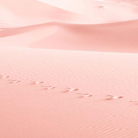핑크 모래