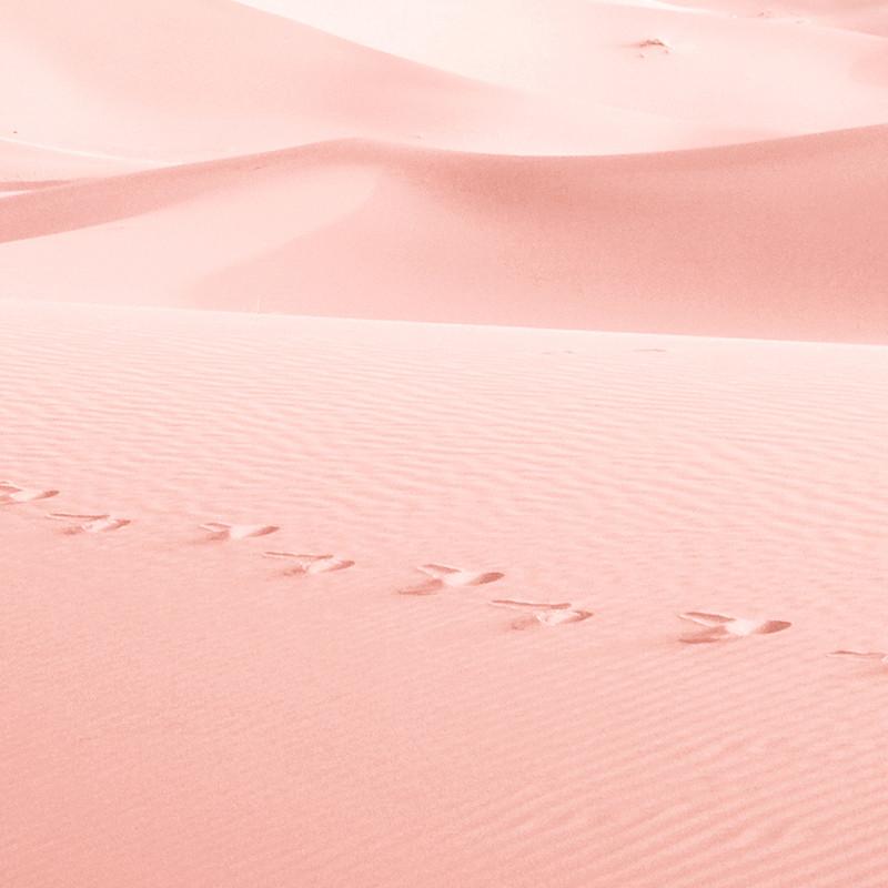 Syntolkning: fotsteg/avtryck i rosa ökensand