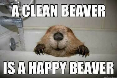 No one wants a dirty beaver