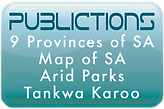 publications 1.png